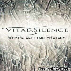 Vital Silence What's Left For Mystery